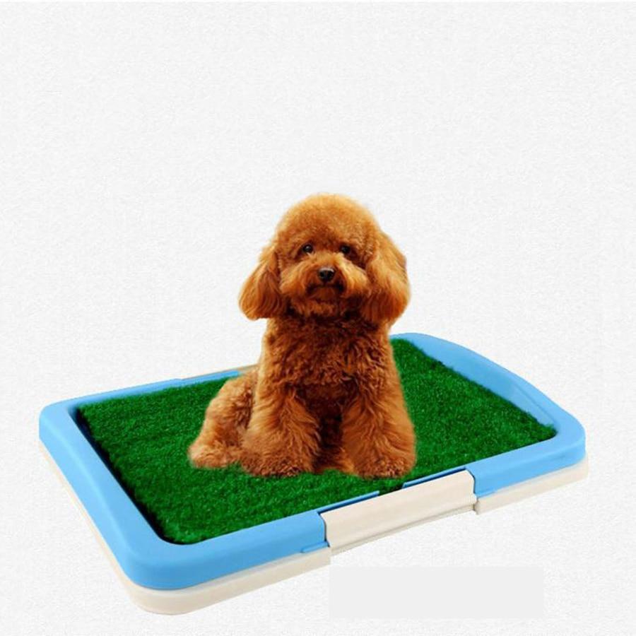 Bac litière chien toilette pot formation intérieur excréments chien nettoyage caca Mascotas chiens herbe Evcil Havan produits pour animaux 80A0883