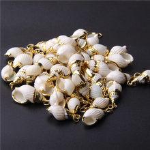 Banhado a ouro natural espiral conchas para diy artesanal conchas pingente jóias artesanal decoração para casa fazer jóias 4 pçs