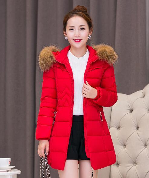 2018 nueva sección larga femenina de manga larga con capucha cuello de piel gruesa abajo ropa de algodón acolchado