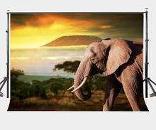 Dusk Grassland พื้นหลังช้างทิวทัศน์ธรรมชาติเด็ก Photo Studio ฉากหลัง 150x220 ซม. การถ่ายภาพฉากหลังผนัง