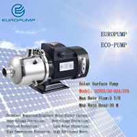 EUROPUMP MODEL(SCPE5/30 D24/370)Free Shipping DC24v 370w Solar power water pump solar surface pump with Build in MPPT controller