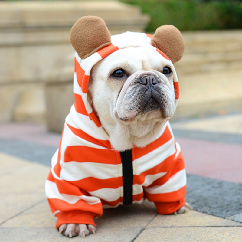 [MPK Store] Pet Dog French Bulldog Clothes Orange Stripe With Zipper, Dog Clothes, Pet Costume