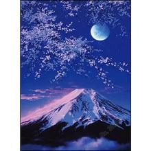 Unduh 63 Gambar Bunga Sakura Dan Gunung Fuji Gratis
