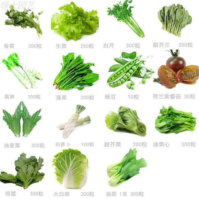 free shipping 15 kinds vegetable seeds in one Wholesale price Green Healthy  Vegetables balcony mini pots