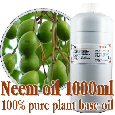 ФОТО Free shopping100% pure plant base oils chinaberry oil 1000ml Cold-pressed neem oil Kill parasites,remove mites