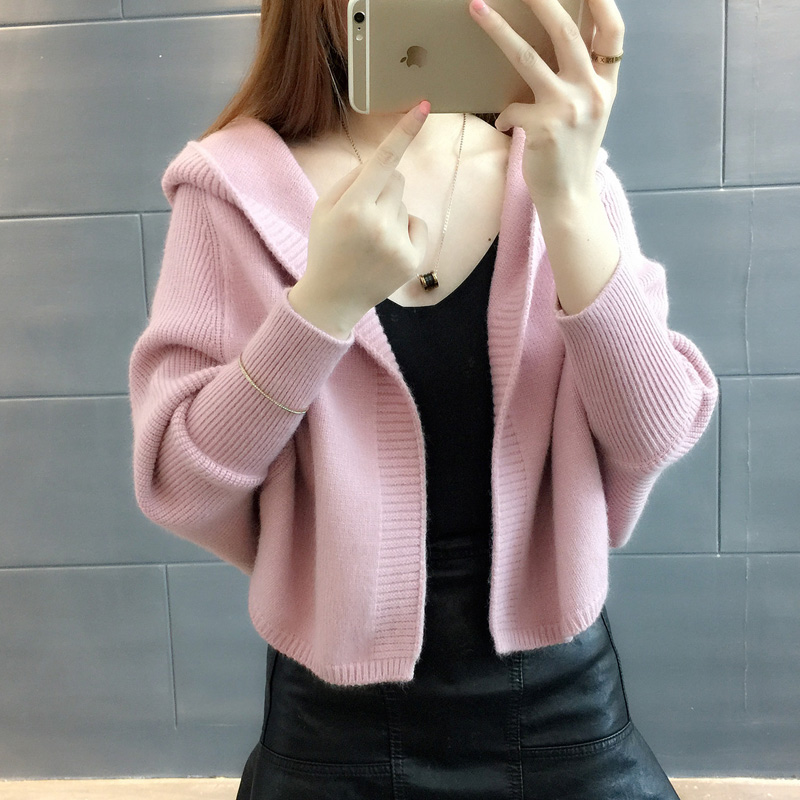 2018 Autumn Winter New Women Bat sleeve Knitted Sweater Feminino Casual Solid Hooded collar Cardigans Sweaters Female Tops XY410