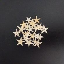 HappyKiss 20 шт. мини-Морская звезда Ремесло украшения природные морские звезды DIY пляжный домик Свадебный декор Морская звезда раковины