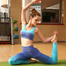 2016 Yoga Tight Sports Pants and Bra Suits Female Fitness Jogging High Moisture Wicking Stretch Beam Leg Pants Yoga Sets