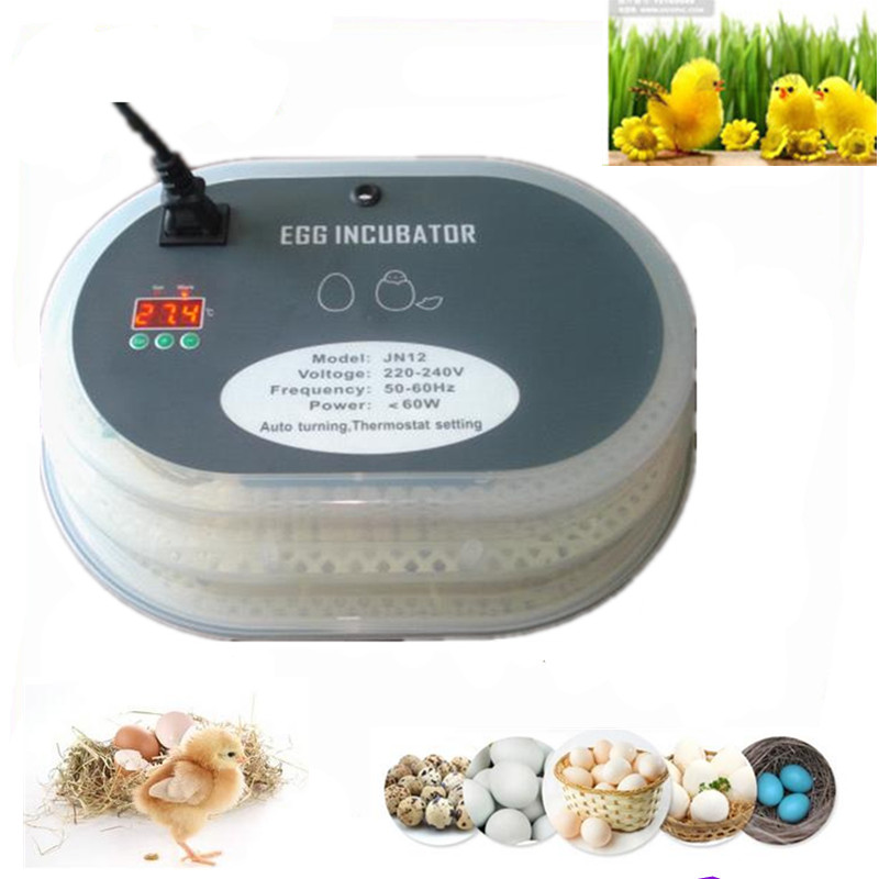 12 Eggs Auto Hatchers  mini home farm commercial industrial  electric thermostat automatic intelligent hatching tool 12 Eggs Auto Hatchers  mini home farm commercial industrial  electric thermostat automatic intelligent hatching tool