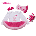 Birthday Cute Baby Girl Clothes 4Pcs Pink Long-Sleeve Cotton Tutu Dress Best Gifts Outfits Set Cake Legging Headband Shoes Hot