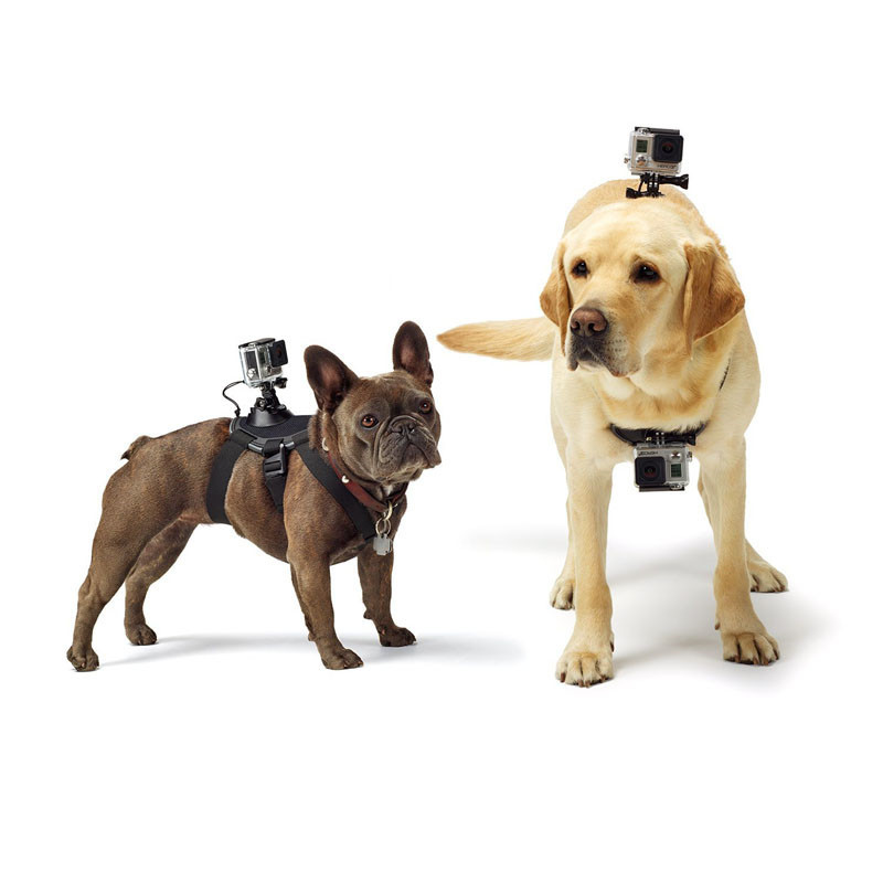 Professional Adjustable Hound Dog Fetch Harness Belt Mount Action Pet Dog Fixed Chest Strap For GoPro Hero Action Sport Camera