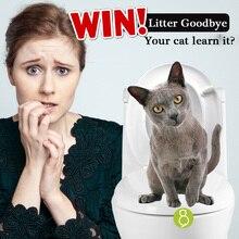 kat på toilet