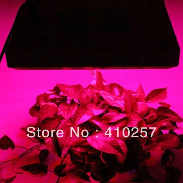 Горячая Светодиодный светильник для выращивания 120 Вт(55*3 Вт) для светодиодный освещение для палаток, высокое качество, 3 года гарантии, дропшиппинг