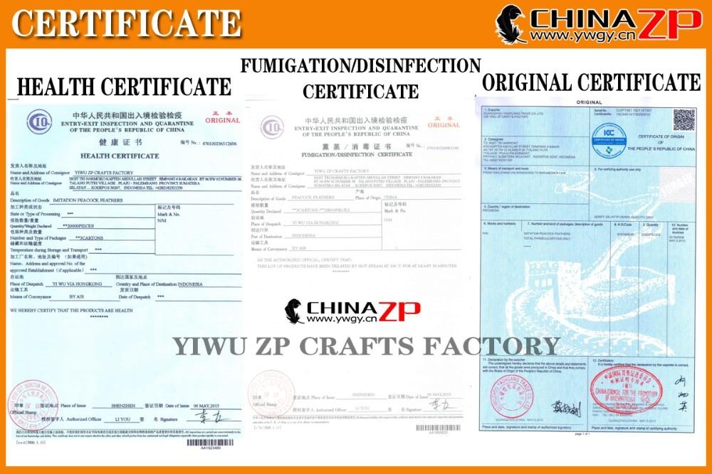 Fournisseur de plumes de CHINAZP pour certificat de FUMIGATION/désinfection certificat d'origine certificat de santé