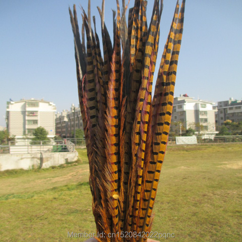 50pcs yellow pheasant tail feathers long 40 45 cm 16 18 inch diy carnival clothing wedding. Black Bedroom Furniture Sets. Home Design Ideas
