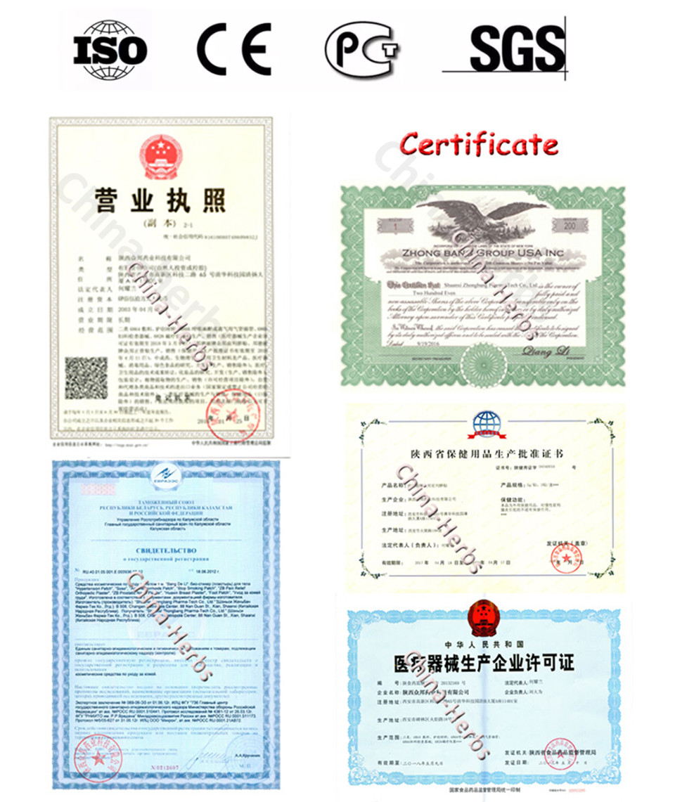 25pcs / lot Band De Li ZB Pain Relief Patch Plasters Gypsum analgesik - Penjagaan kesihatan - Foto 5