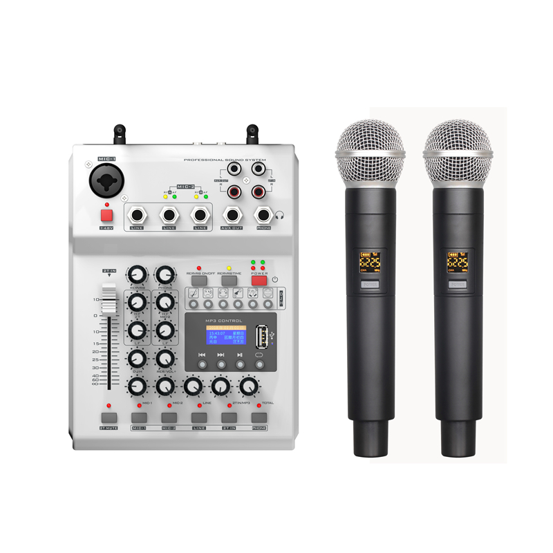 LEORY F 12T USB Audio DJ Mixer KTV Microphone Nono Input 2 Wireless Microphone 48V Phantom