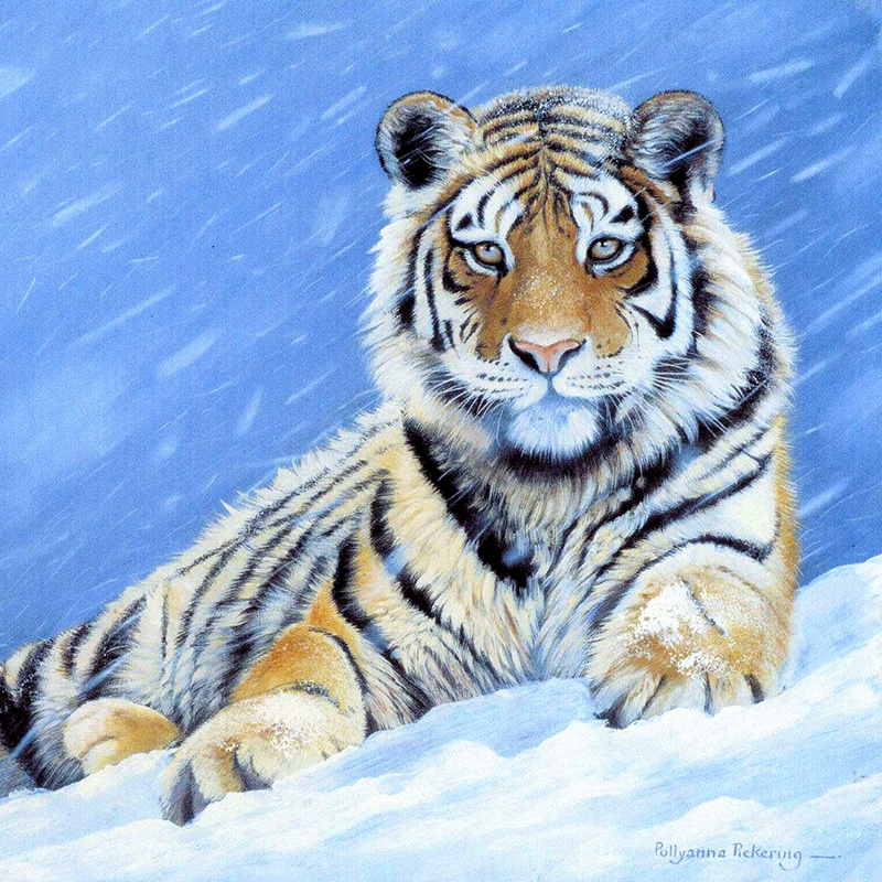 Back To Search Resultshome & Garden Full Round Diamond Embroidery Snow Tiger 5d Diy Diamond Painting Cross Stitch Stickers Rhinestone Mosaic Home Decoration Rt422
