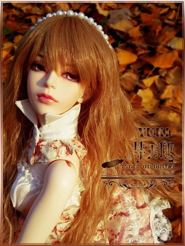 цены  [wamami] AOD 1/3 BJD Dollfie Girl Set* FREE FACE UP/EYES/~YUKI