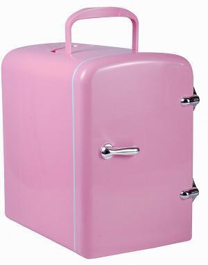 4L Auto Car Warmer And Cooler Bag Mini Refrigerator Cosmetics Car Dual Mini  Fridge
