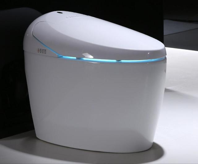 Luxe S Trap Intelligent Wc Allonge Telecommande Intelligent Bidet