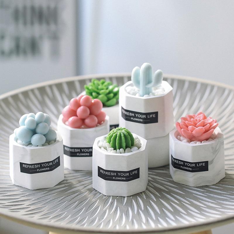 Desktop-Ornaments Succulents-Plants Bonsai Garden-Decor Home-Decoration-Accessories Artificial