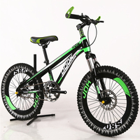 20 Inch Mountain Bike Single Speed Children Boys And Girls Students Bicycles Outdoor Sport Kids Bicicleta