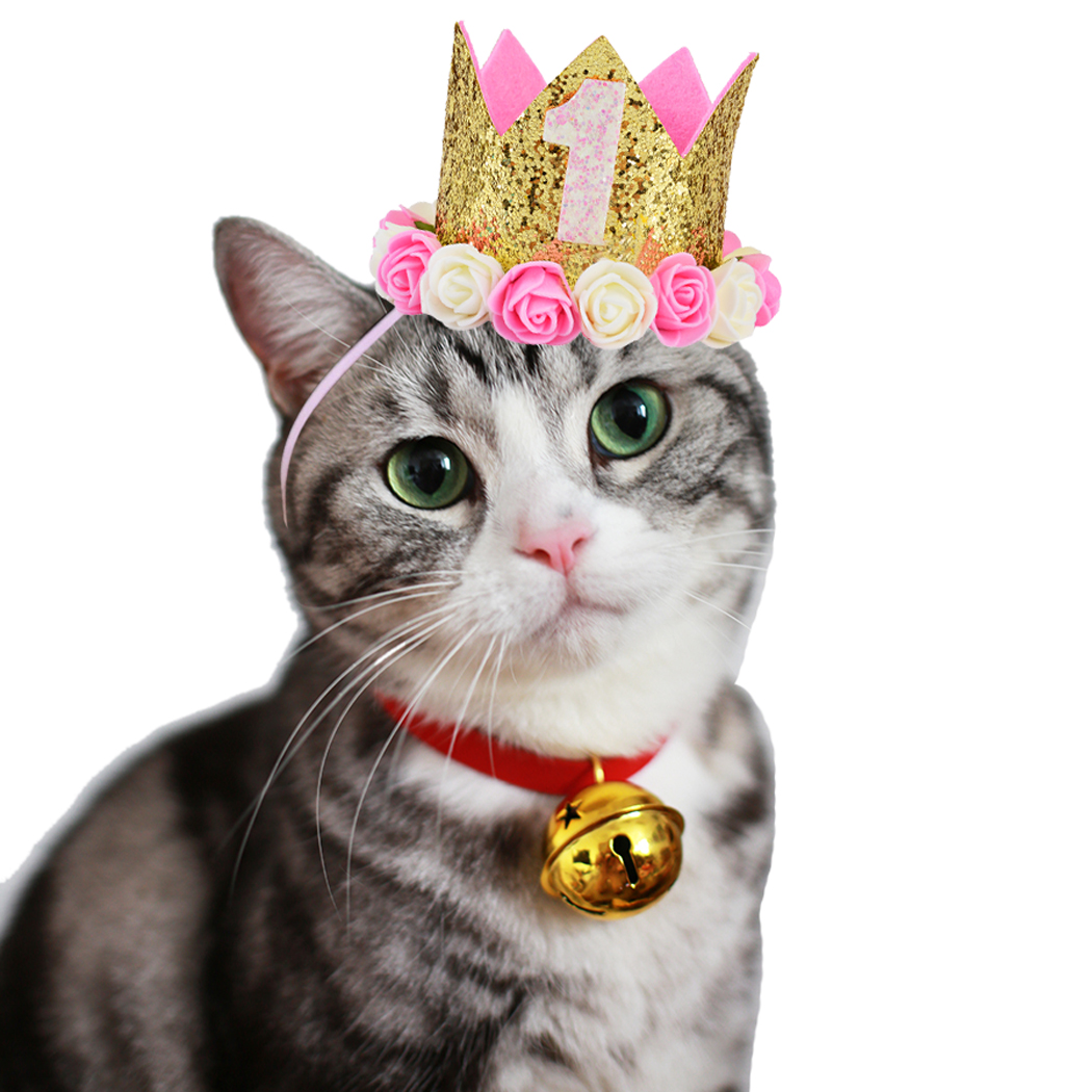 High Quality Pet Cat Dog Birthday Party Hat One To Five Caps First Princess Crown Puppy Kitten Favors Headband In From Home Garden