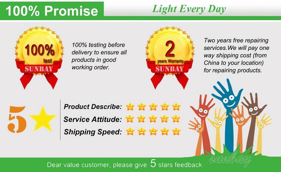 12S-T8-G13-Promise