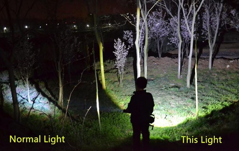 spotlight  (11)