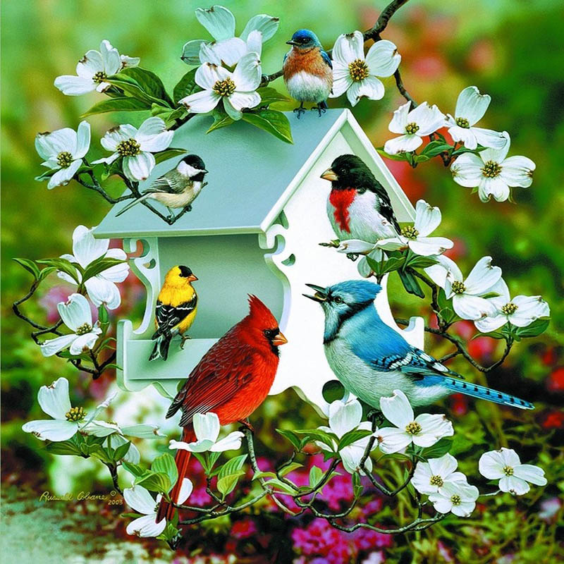 5D DIY Diamond Painting House and birds crystal Diamond ...