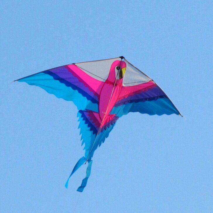 Livraison gratuite de haute qualité perroquet cerf-volant en nylon tissu volant dragon jouets de plein air enfants outils pieuvre cerf-volant bobine dessin animé cerf-volant usine - 3