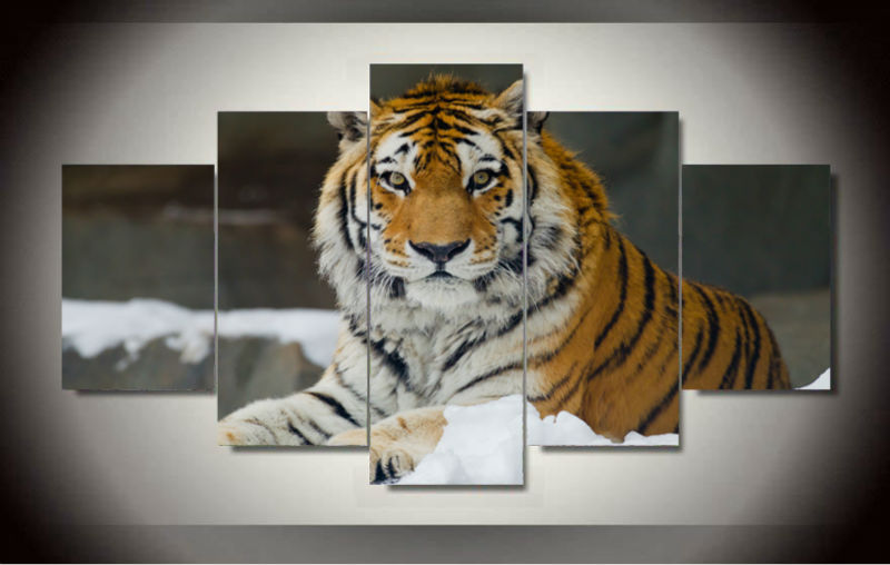 5 Panel Modern Printed Tiger Canvas Painting Cuadros