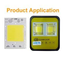 10PCS LED Chip Lamp 30W 40W 50W AC110V 220V Smart IC driver light beads Fit For DIY Floodlight Spotlight Streetlight