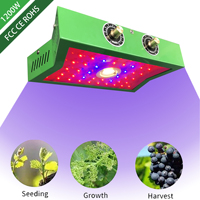 zjright LED COB Chip For Grow Plant Light Full Spectrum 85 265V 1000W For Indoor Plant Seedling Grow and Flower Growth Lighting