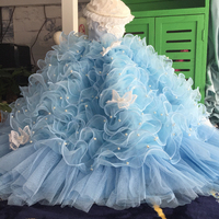OnnPnnQ Dog Party Dress Super Luxury For Small Dogs Clothes Princess Noble Wedding Tutu Lace Pearl Puppy Dresses Pleated Skirts