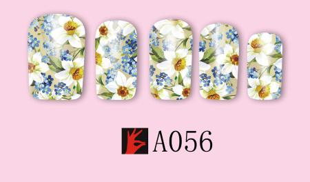 A056(1)