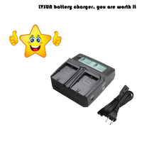 LVSUN Professional Camera Battery NB 11L NB11L Dual Car AC Charger For Canon PowerShot ELPH A2300