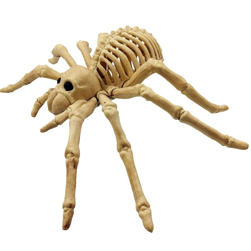 Scary Horrified Lifelike Spider Skeleton Model Toy Creative Frightening Realistic Toy Model for Decoration Halloween Gift цена 2017