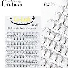Colash Premade 러시아어 볼륨 팬 3d/4d/5d/6d 밍크 속눈썹 짧은 줄기 속눈썹 미리 만든 속눈썹 확장 용품