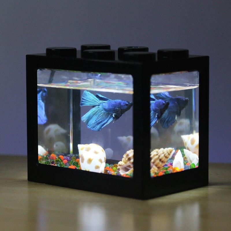 small betta fish tank black