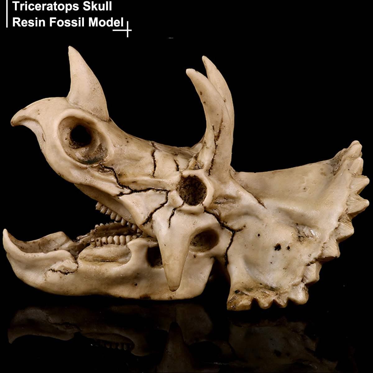 18cm*12cm*10cm Resin Dinosaur Triceratops Skull Bone Model Craft Skeleton Aquarium Decorative Fish Tank Background