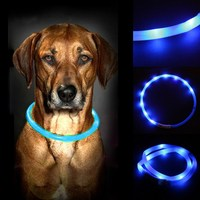 Red Blue Green 3 Colors Waterproof Rechargeable USB LED Flashing Light Band Belt Safety Pet Dog