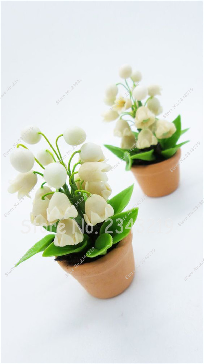 bulbs flower seeds campanula seedsindoor plant potted plantsmini lily of the valley flower bonsai bell orchid seeds 100pcsin bonsai from home garden