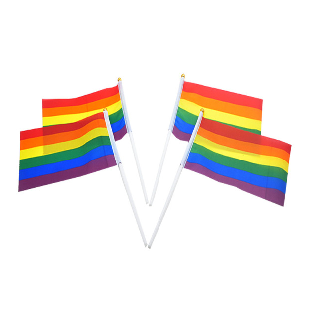 10pcs Pack 14 21cm Gay Pride Small National Flag Rainbow Hand Waving