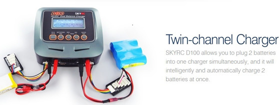 skyrc d100 twin charger