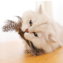 Funny Feather Toy for Cats