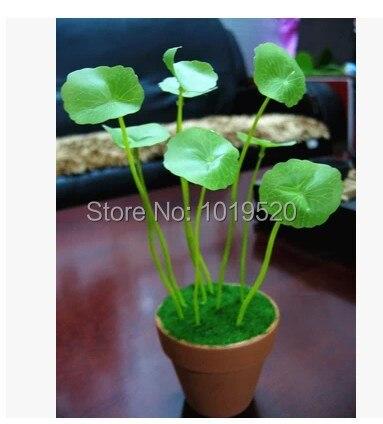 Buatan Mini tanaman pot meja hiasan bunga bonsai kecil tanaman perhiasan  set hijau untuk dekorasi rumah 2c9c499e5c