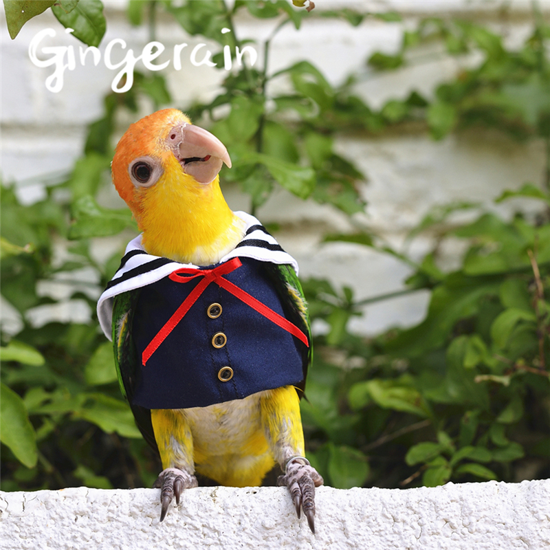 Gingerain Bird Clothes Parrot Clothes Sailor Uniform Original Hand-made Custom Bird Clothes Sailor Uniform