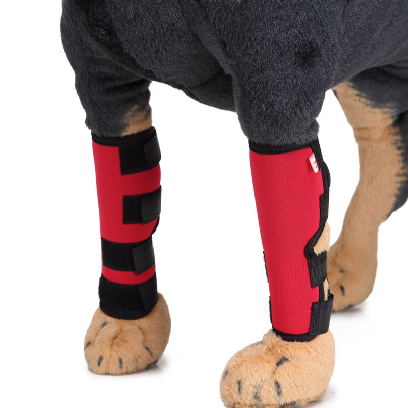 2pcs Dog Canine Rear Leg Knee Brace Hock Joint Wrap for Heals and Prevents Injuries Sprains Helps with Loss of Stability S M L